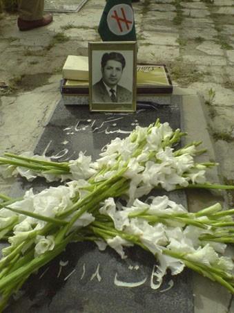دکتر محمدرضا عاملی تهرانی، آژیر