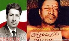 دکتر محمدرضا عاملی تهرانی،آژیر