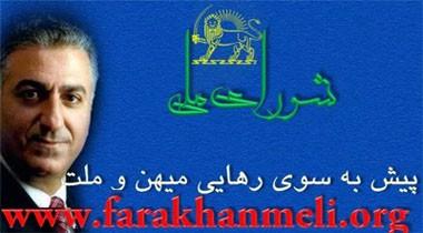 شاهزاده رضا پهلوی، شورای ملی، کمیته موقت